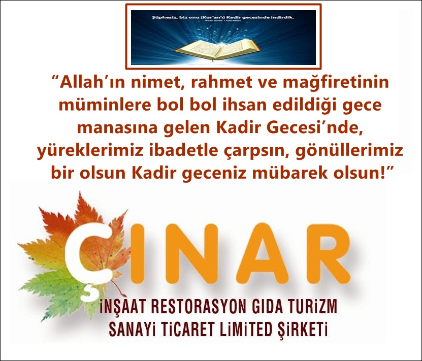 çınar 2