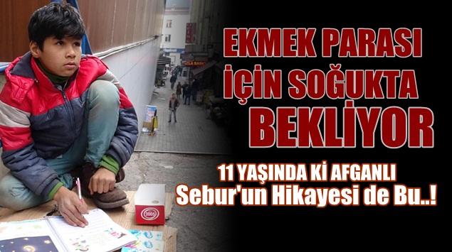 Afganlı Sebur'un Türkiye Hikayesi