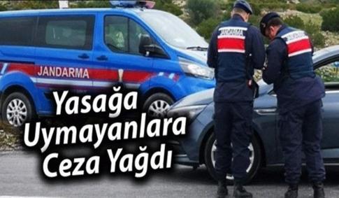 KISITLAMADA 420 KİŞİ CEZA ALDI..